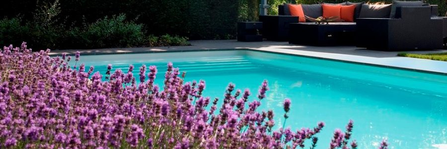 Een polyester zwembad in je tuin laten plaatsen